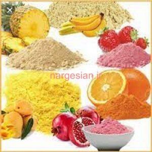 محصولات پودر میوه و گیاهی